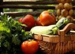 gezonde biologisch voedsel